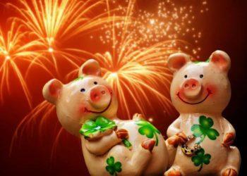 прикольные картинки со свиньей