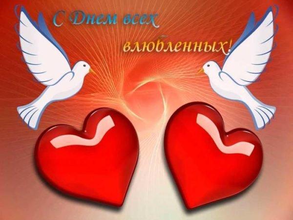 голуби и сердца влюбленных