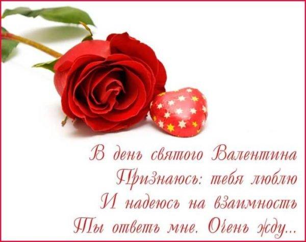 роза и поздравление с Днем святого Валентина