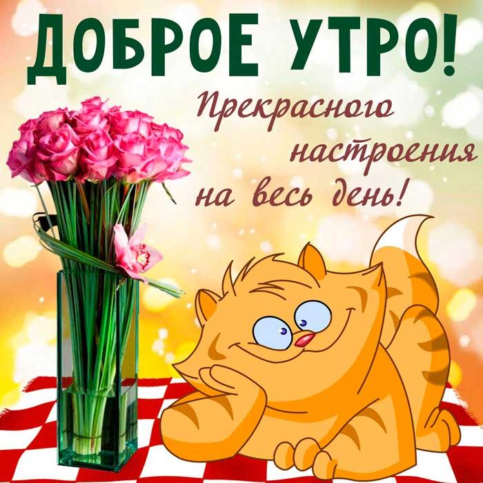 кот с цветами любимой