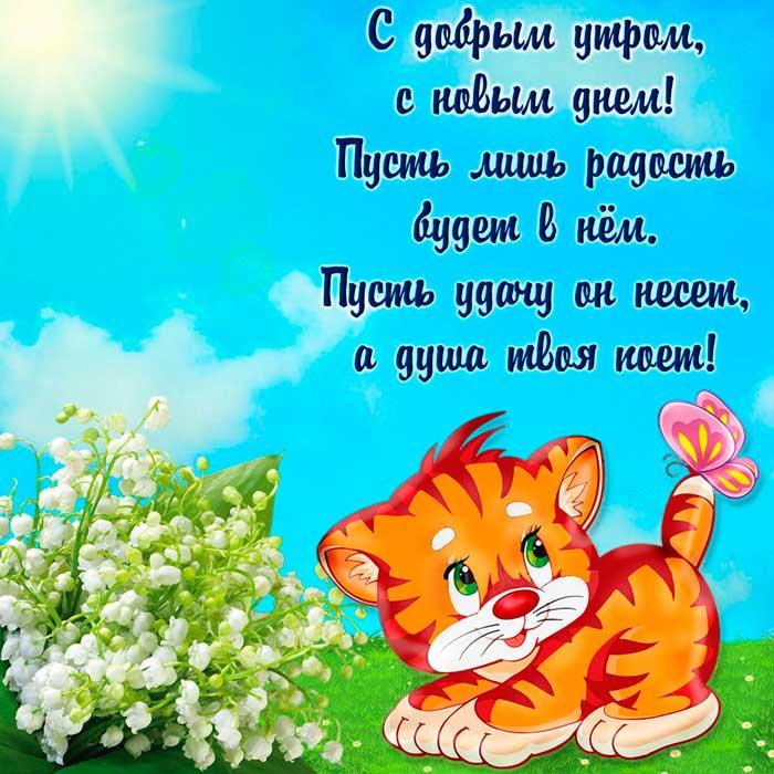 смешной котенок и пожелание доброго утра