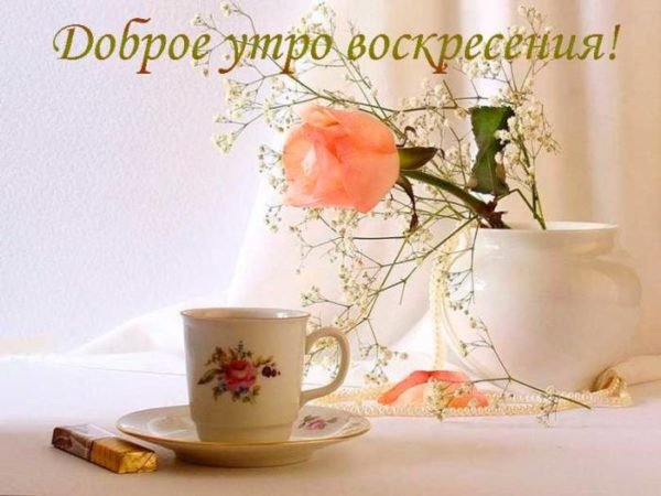 чашка и цветок