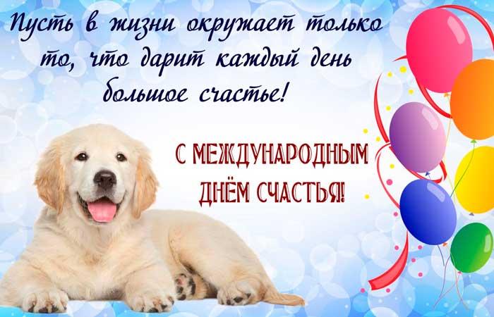 пес и шарики