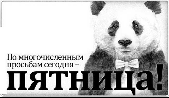прикольная панда