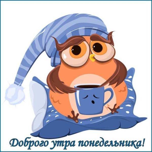 прикольная сова и кофе