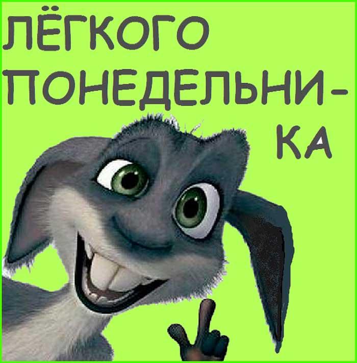 прикольный кролик желает легкого понедельника