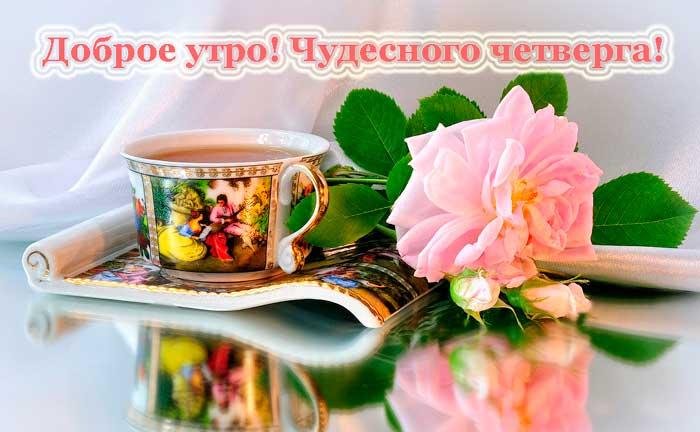 роза и чашка с чаем