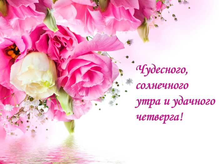 розы и пожелание в четверг