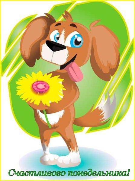 собака с цветком
