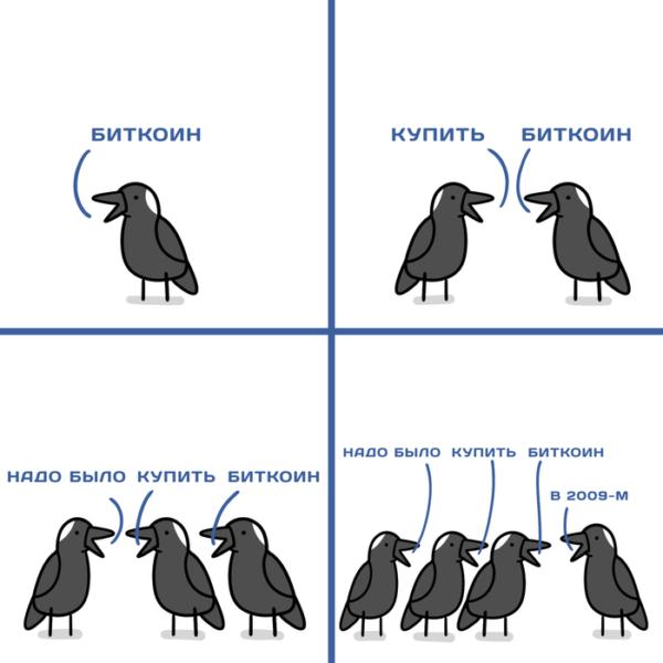 Смешные картинки с надписями до слёз (15 штук)