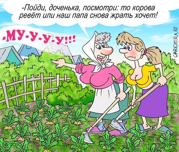 Прикольная картинка про огород