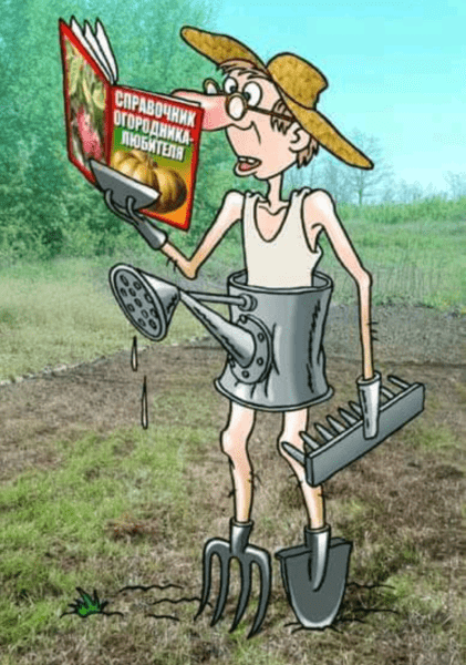 смешная картинка про огород