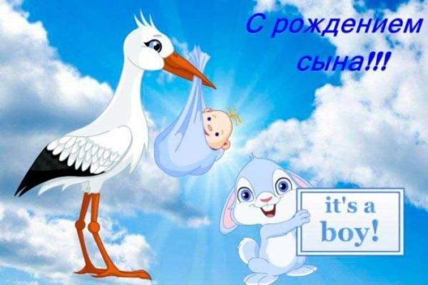 аист и заяц поздравляют с новорожденным