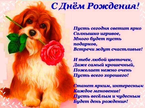 красивые стихи в День рождения