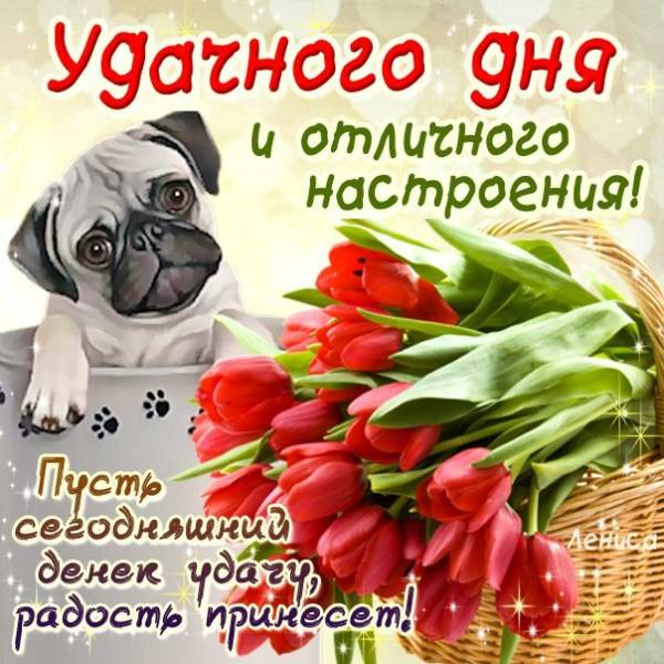 щенок с букетом и пожеланием