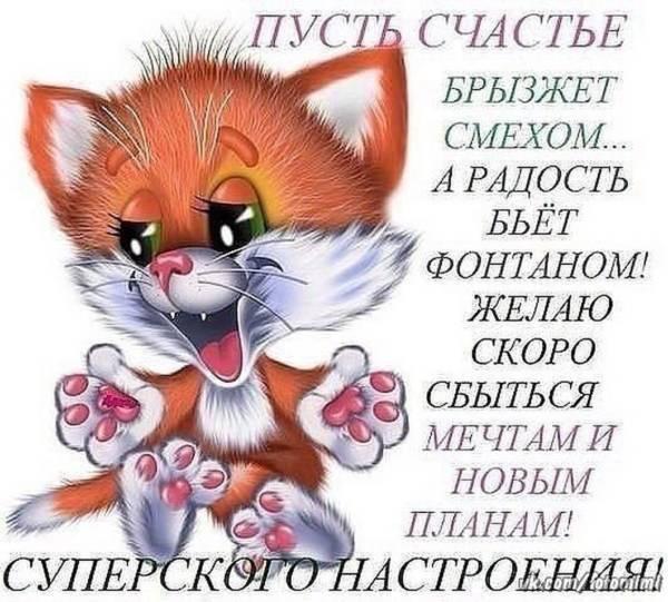 прикольный котенок со стихами