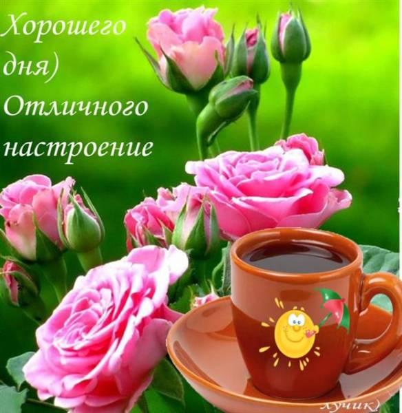 кофе, розы и пожелание