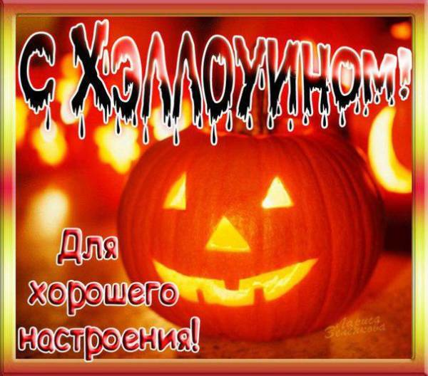 фоном хромакей поздравительные открытки хэллоуин растения, рекомендации