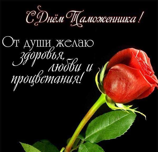 роза и поздравление
