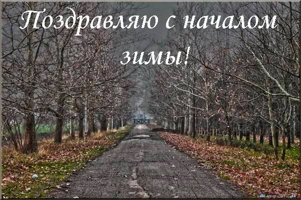 декабрь без снега