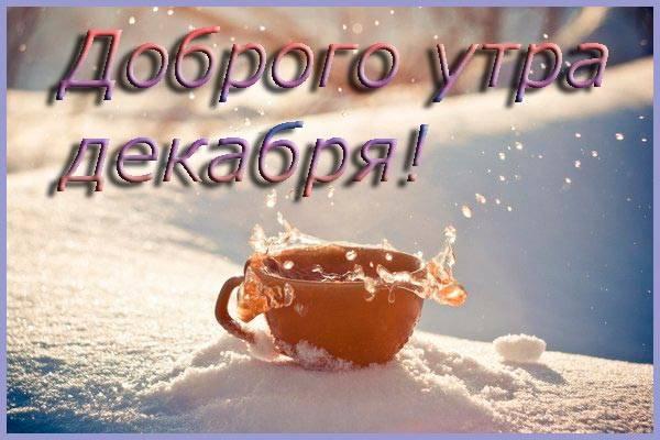 чашка с чаем на снегу
