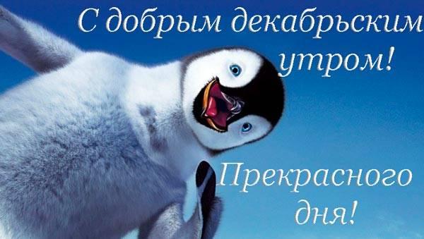 пингвин с пожеланием