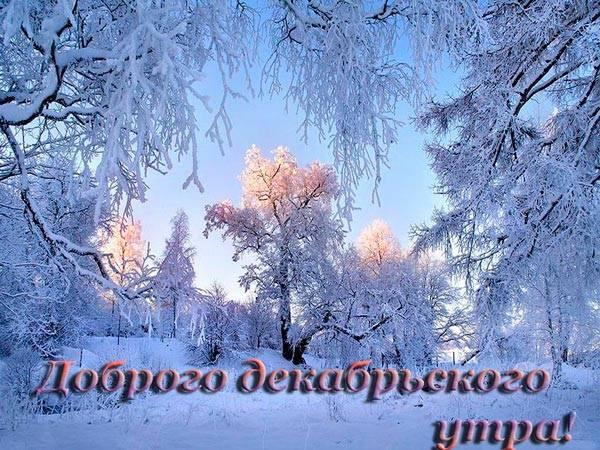 декабрьское утро