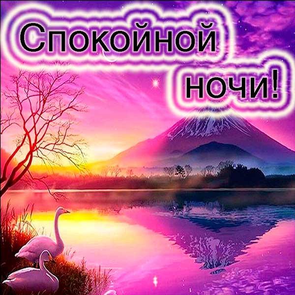 ночное озеро с лебедями
