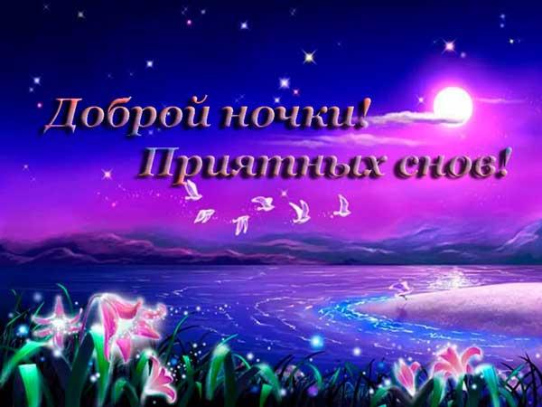 звезды, цветы и луна