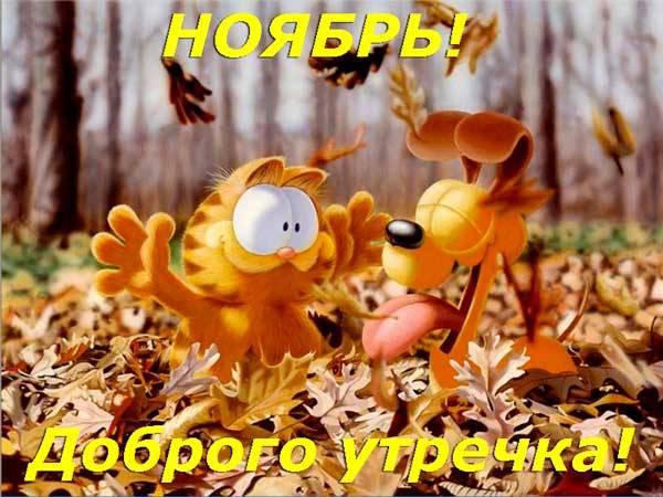 кот и пес в ноябрьском лесу