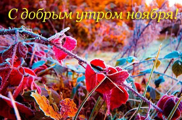 доброе утро ноября
