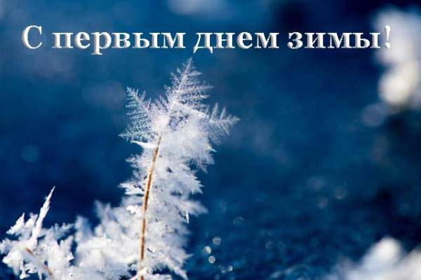 первая снежинка
