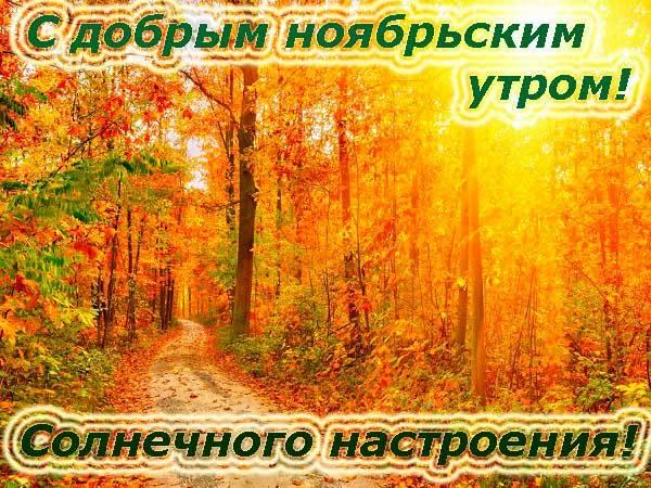 солнечного ноября
