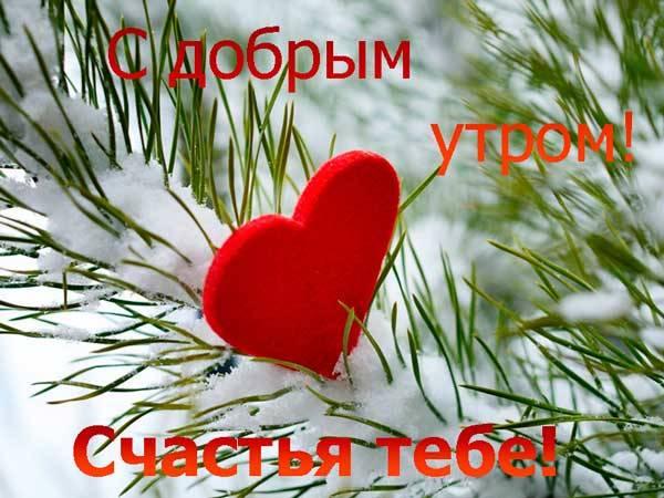 сердце и ветка елки