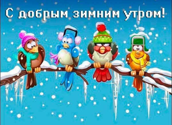 смешные птички в шапках