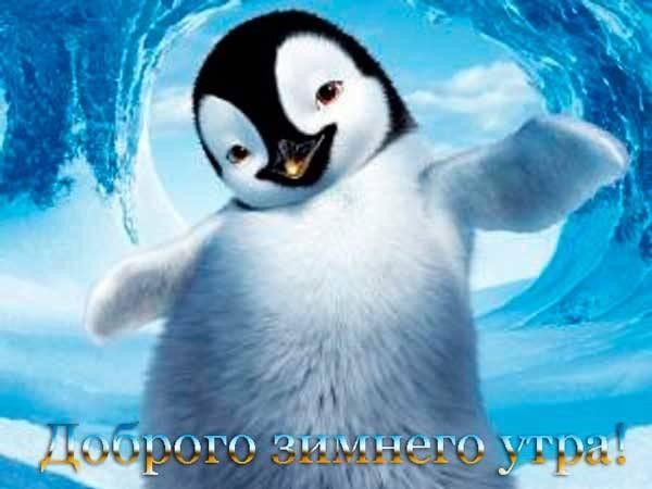 пожелание от пингвина