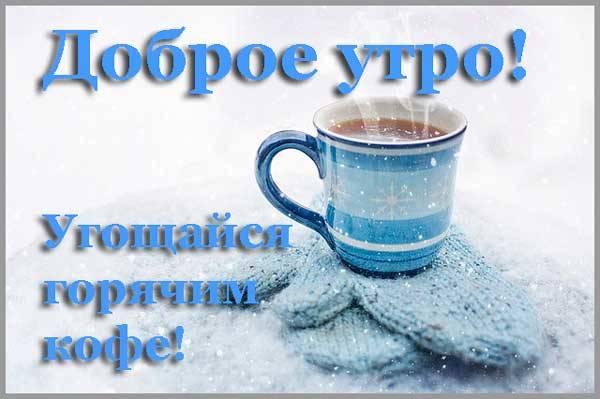 чашка с кофе на снегу