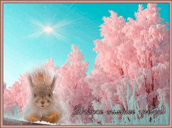 Картинки с добрым утром зимние (45 штук)