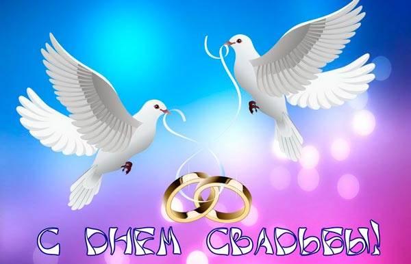 обручальные кольца и голубки