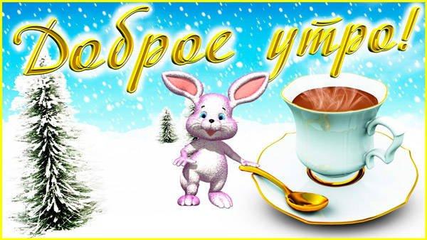доброе утро от зайца