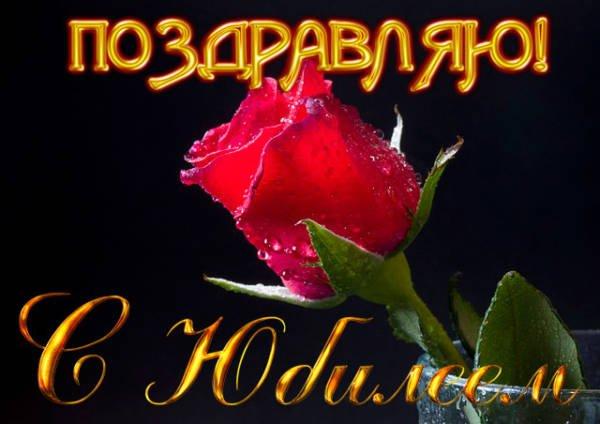 алая роза и поздравление