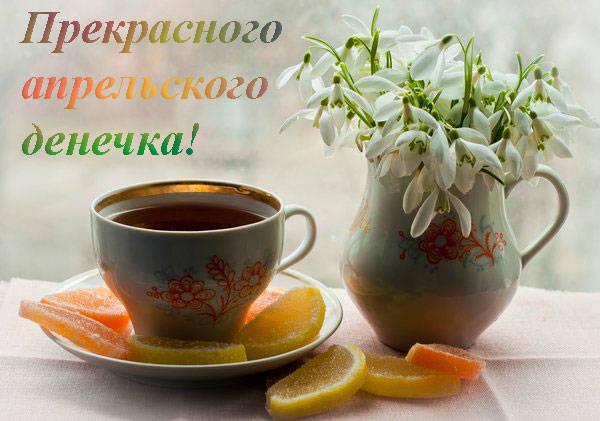 чашка с чаем и подснежники