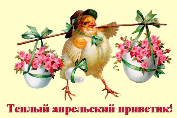 прикольная курица