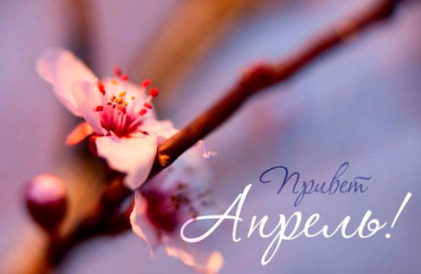 привет, апрель