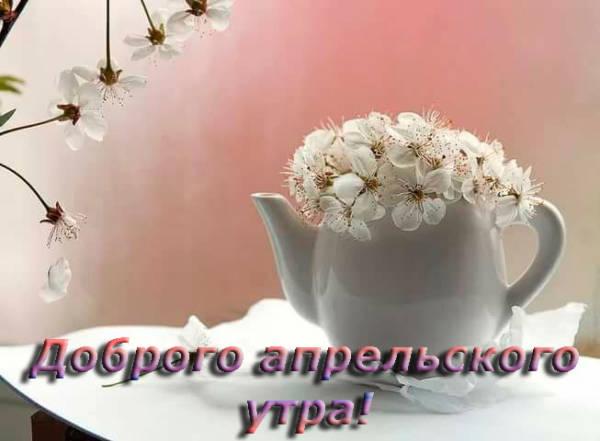 цветущая ветка и чайник