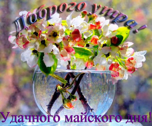 удачного майского дня