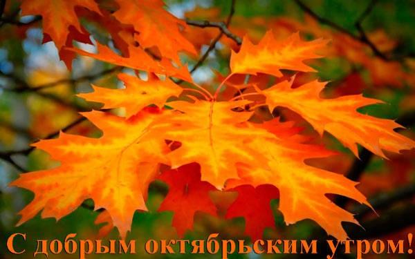 красивая картинка с добрым утром октября