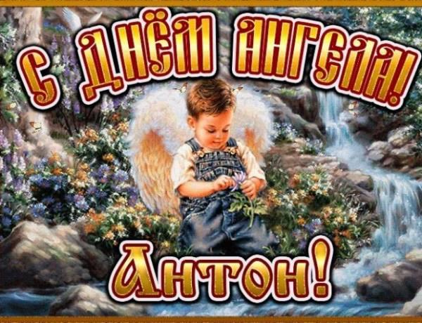 открытка на День ангела Антону