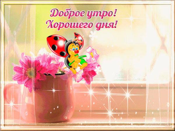 пожелание и цветы